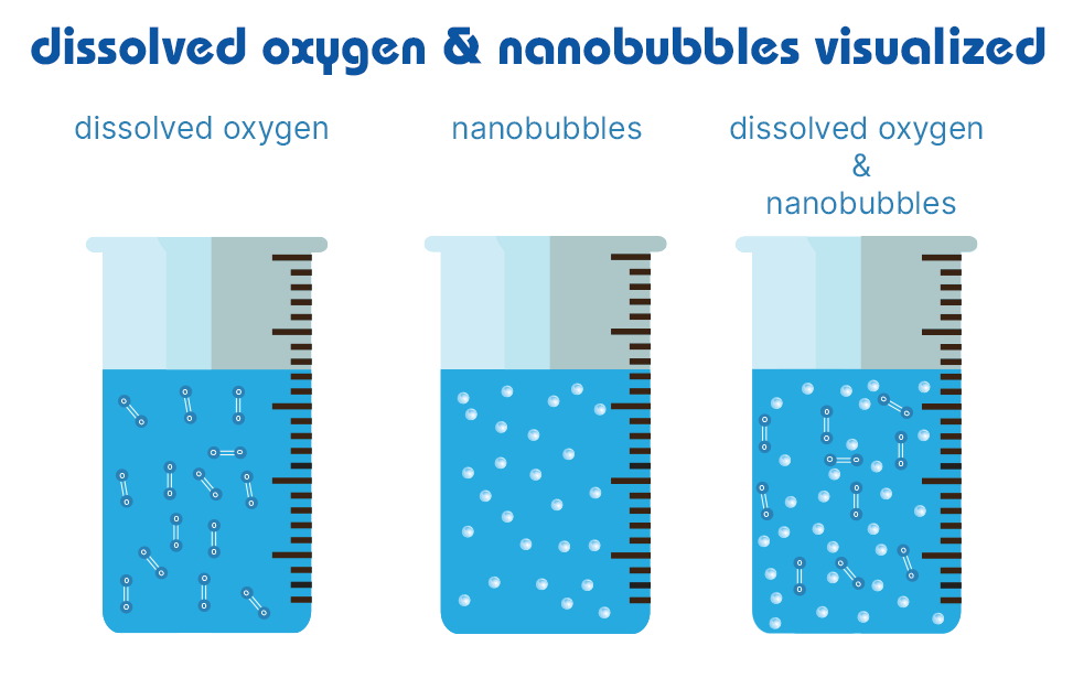 dissolved oxygen and nanobubbles visualized