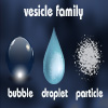 Vesicle bubble droplet and particle