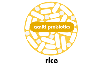 Probiotics for rice cultivation